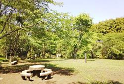 バーベキュー広場